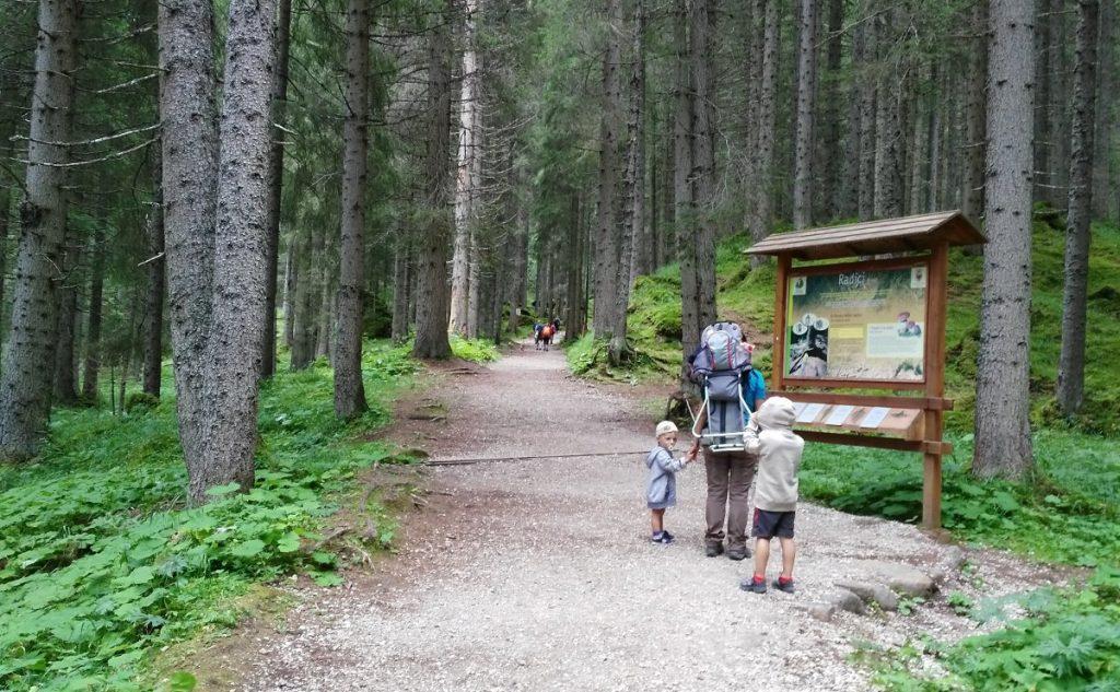 Famiglia di spalle in un bosco che legge cartellone