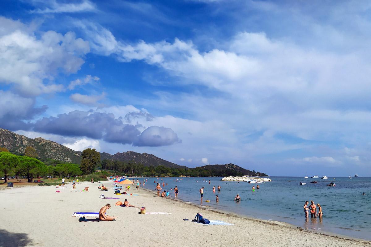 spiaggia con pineta alle spalle
